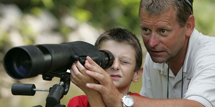 Best Spotting Scopes