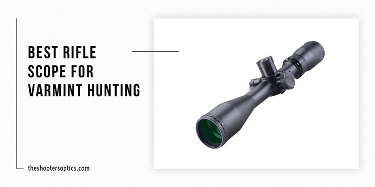 Best Rifle Scope for Varmint Hunting