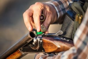 Hunting boar safety tips