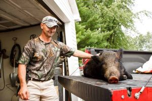 Boar hunter with his prey in the truck